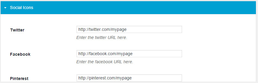 Social-Links-Now-Under-Common-Options